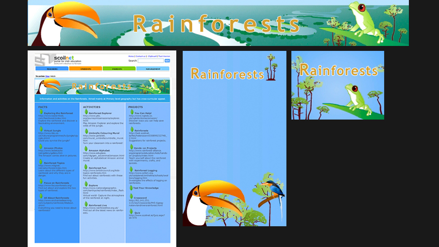 Web design for the portal for Irish education, Scoilnet
